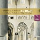 Bach : Cantatas/Philippe Herreweghe