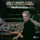 Sibelius: Popular Tone Poems/Herbert von Karajan
