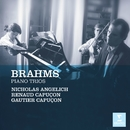 Brahms: Piano Trios/Renaud Capuçon/Gautier Capuçon/Nicholas Angelich