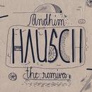 Hausch (The Remixes)/andhim