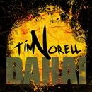 Bahai/Tim Norell