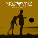 Am I Wrong/Nico & Vinz