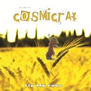 Fly My Love/COSMICRAY