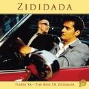For Fuld Musik/Zididada