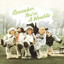 Remember You're A Womble/The Wombles