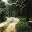 Schubert - Lieder/Christoph Prégardien/Michael Gees