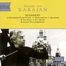 Symphonies Nos. 8 & 9 - Schubert/Herbert von Karajan/Berliner Philharmoniker