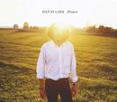 Primer/David Loss