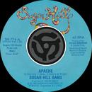 Apache / Rapper's Delight [Digital 45]/The Sugarhill Gang