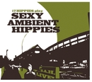 17 Hippies Play Sexy Ambient Hippies/17 Hippies