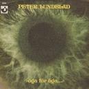 Öga för öga/Peter Lundblad