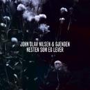 Nesten som eg lever/John Olav Nilsen & Gjengen