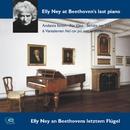 Ludwig van Beethoven: Andante Favori, Für Elise, Sonata Op. 111/Elly Ney