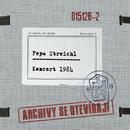 Koncert 1984/Pepa Streichl