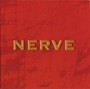 Nerve/Nerve