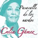 Pasacalle de los nardos/Celia Gamez