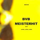 BVB MeisterHit 2011 - Schön, schön, schön/BOH-HD