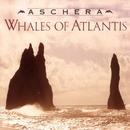 Whales Of Atlantis/Aschera