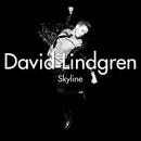Skyline [Acoustic Version] (Acoustic Version)/David Lindgren