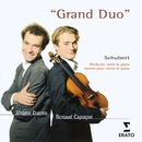 Schubert - Violin Works/Renaud Capuçon/Jerome Ducros