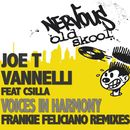 Voices In Harmony feat. Csilla/Joe T Vannelli
