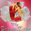 Why/DreamZone