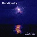 Begegnungen/David Qualey
