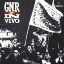 In Vivo/GNR