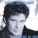 Feeling So High/David Hasselhoff