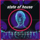 Synthetic Mankind (The Remixes)/State Of House
