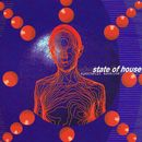 Synthetic Mankind/State Of House