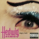 Angry Inch/Hedwig And The Angry Inch