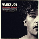 Dream Your Life Away/Vance Joy