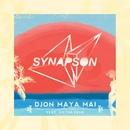 Djon Maya Maï (feat. Victor Démé) [Remixes EP]/Synapson