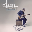 Blues for the Modern Daze/Walter Trout