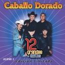 12 Grandes exitos Vol. 2/Caballo Dorado