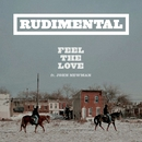 Feel The Love (feat. John Newman)/Rudimental