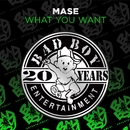 What You Want/Mase