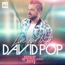 Live Your Life (Jose AM Remix Radio)/David Pop