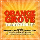 Ready For It (Remixes)/Orange Grove