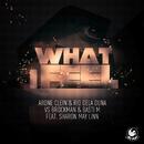 What I Feel (feat. Sharon May Linn)/Arone Clein & Rio Dela Duna vs. Brockman & Basti M