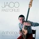 Anthology: The Warner Bros. Years/Jaco Pastorius