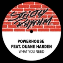 What You Need (feat. Duane Harden)/Powerhouse