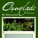 My Reflection/Osunlade