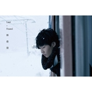 Lost N Found/JJ Lin