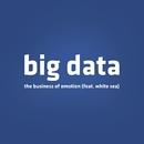 The Business of Emotion (feat. White Sea)/Big Data