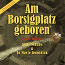 Am Borsigplatz geboren (Acoustic Hymne)/Andy Schade