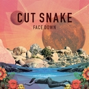 Face Down/Cut Snake