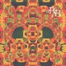 Dirigible Utopia/Rich Robinson