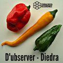 Diedra/D'ubserver